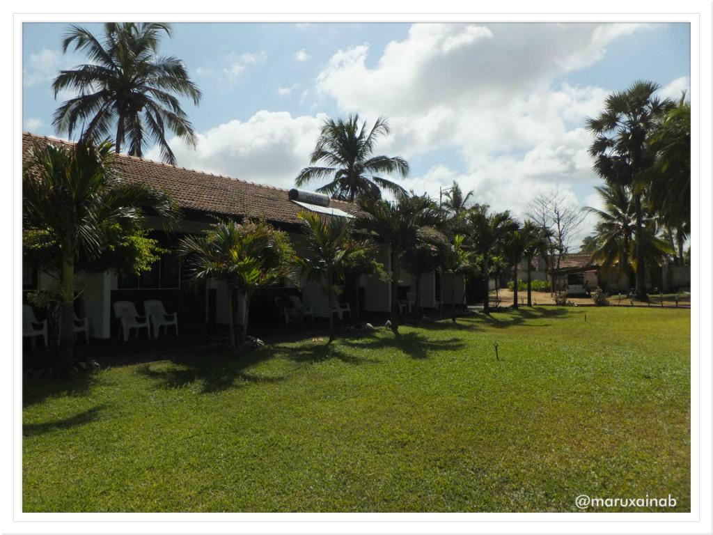 Negombo 2