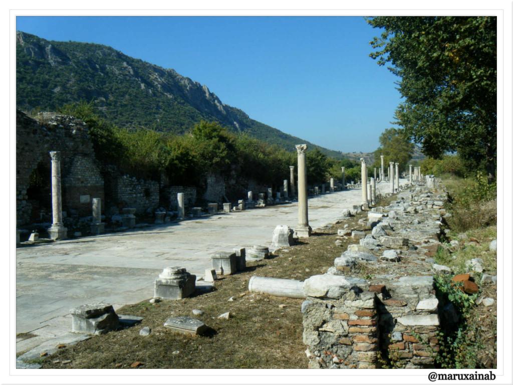 Efeso Via Puerto