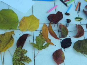 Con unas hojas y unas pinturas ya tengo entretenimiento !!