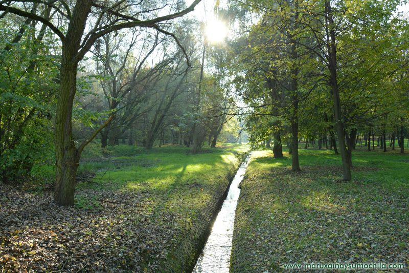 Morning en Oswiecim