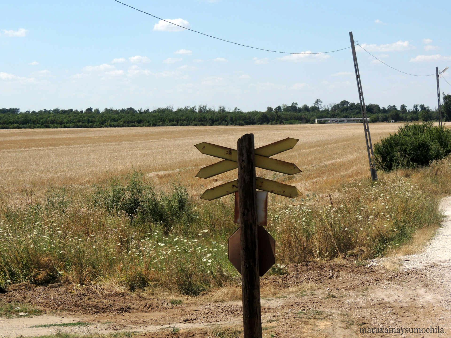 Rumania-en-tren-5