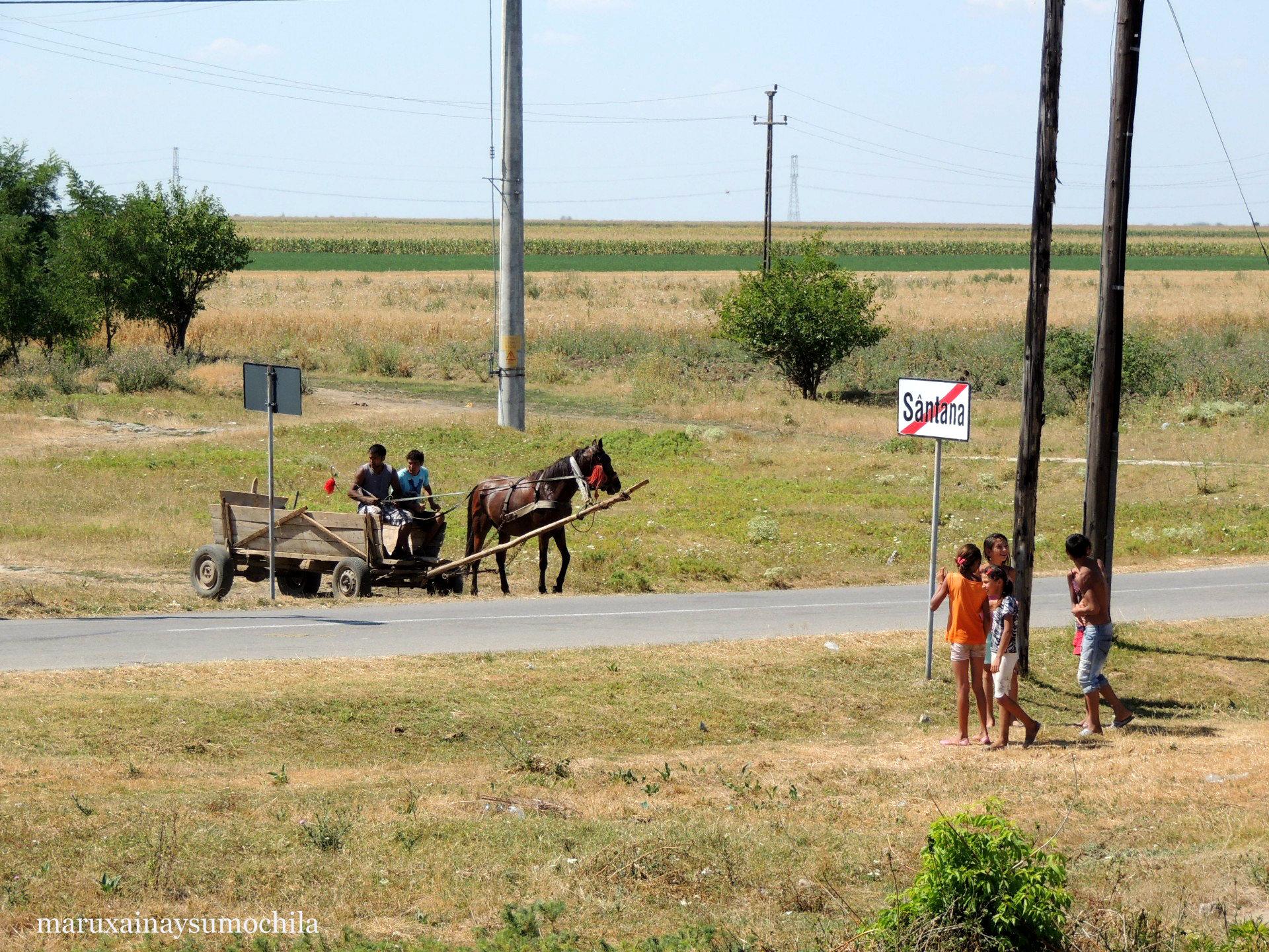 Rumania-en-tren-14