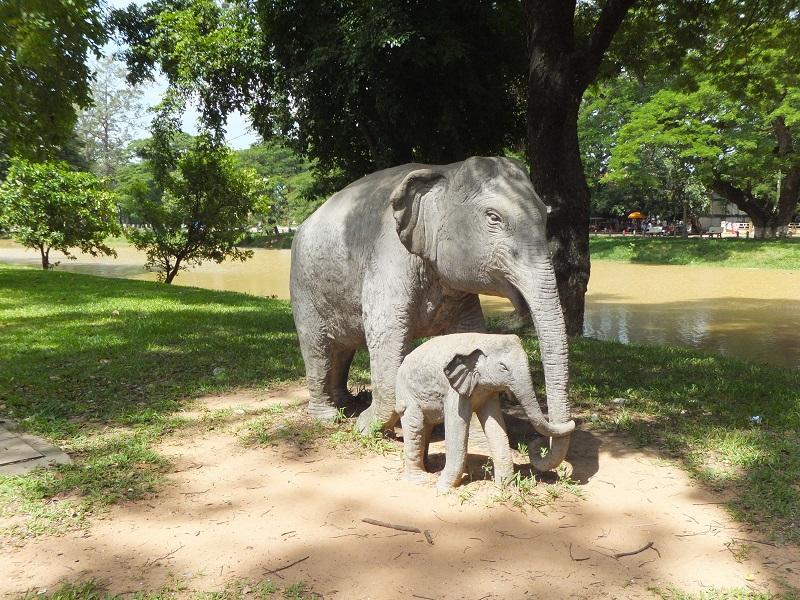 Siem-Reap-día-5-16